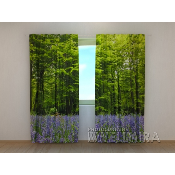 Gardinen bedruckt 3D Vorhänge Foto Vorhang Forest