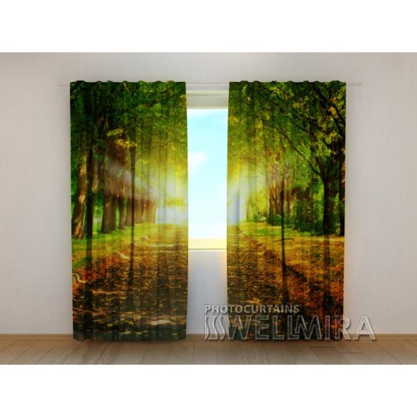 Gardinen bedruckt 3D Vorhänge Foto Vorhang Park