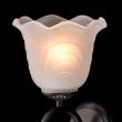 Wandleuchte, Kaffee + Goldfarbe / Metall Glas 1*60W E27, 444021401