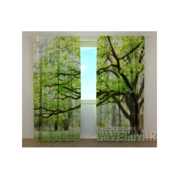 3-D Фото шторы - Зеленое дерево